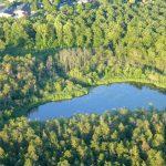 Pøtsø, som vises på billedet her, er blot én af mange søer i det frodige skovområde som omgiver Silkeborg. Foto: Wikimedia Commons 2016.